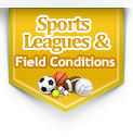Sports Leagues & Field Conditions